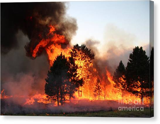 A Burst Of Flames From The White Draw Fire Canvas Print