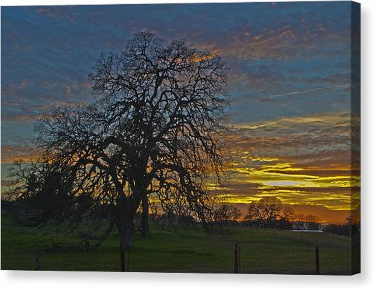 A Country Sunset Canvas Print by Richard Risely