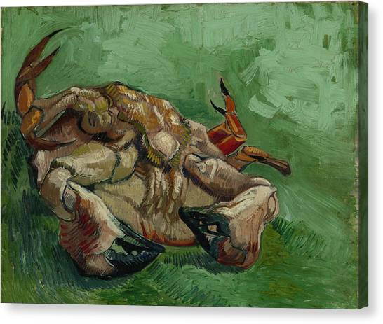 A Crab On Its Back Canvas Print by Vincent van Gogh