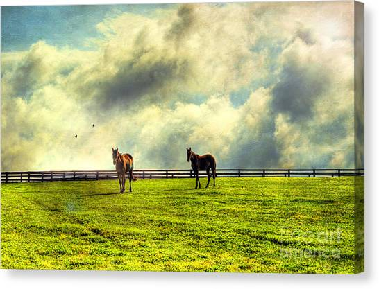 A Day In Kentucky Canvas Print