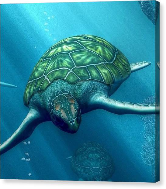 Turtles Canvas Print - A Detail From My Latest #artwork by Daniel Eskridge