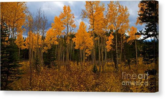 A Different Kind Of Fire Canvas Print