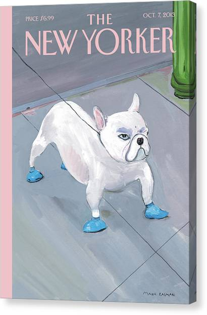 A Dog Wears Shoes On The City Sidewalk Canvas Print