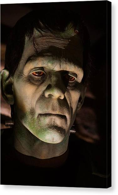 A Face Only..... Canvas Print