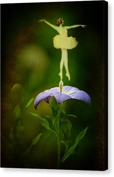 A Fairy In The Garden Canvas Print