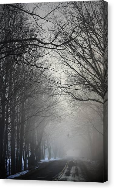A Few Of My Favorite Things Trees In Fog Canvas Print
