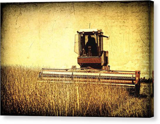 A Field For Harvest Canvas Print