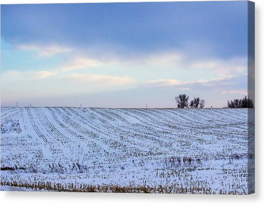 A Field In Iowa At Sunset Canvas Print