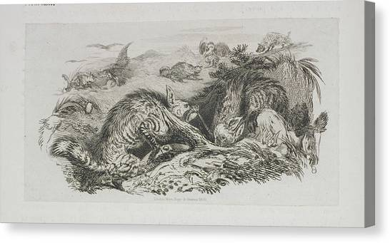 Landseer Canvas Print - A Fox by British Library