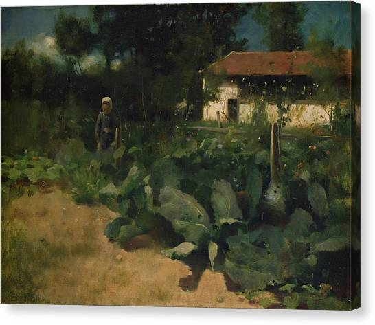 Cabbage Canvas Print - A French Kitchen Garden, 1883 by Edward Stott