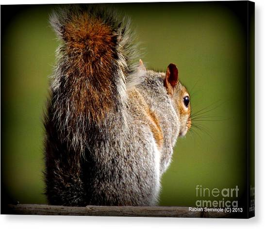A Friend Canvas Print