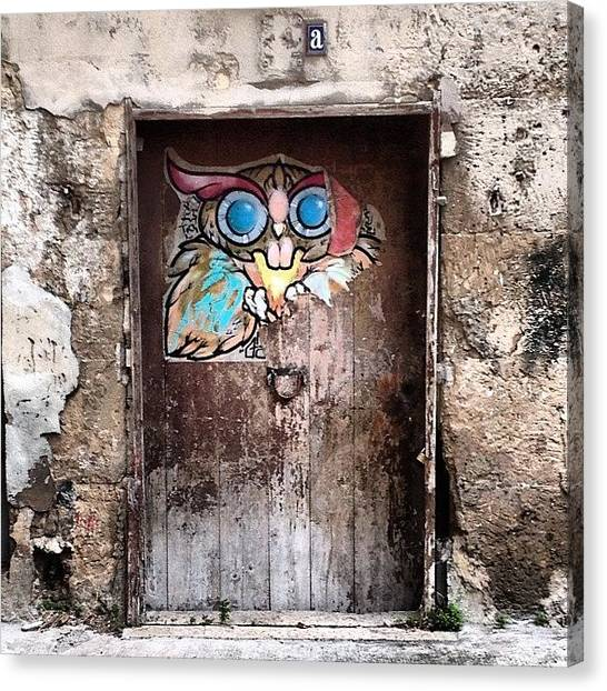 Owls Canvas Print - A Front #door In #palmademallorca by Balearic Discovery