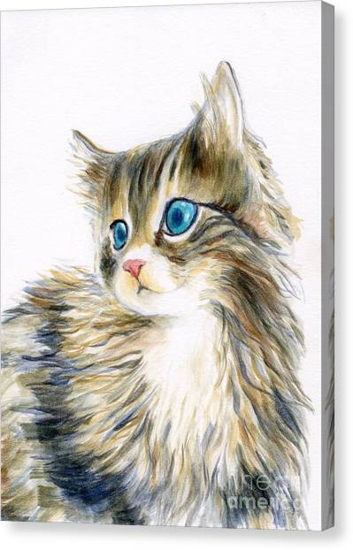 Main Coons Canvas Print - A Furry Kitten by Jingfen Hwu