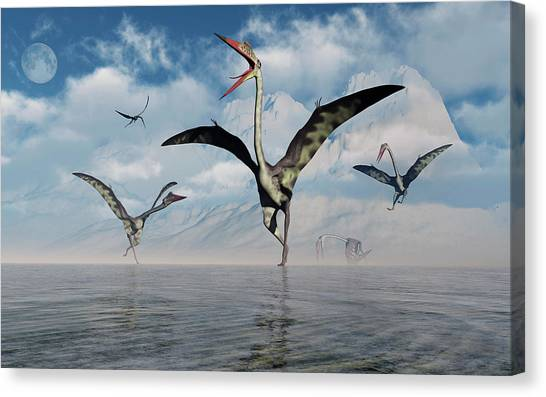 Pterodactyls Canvas Print - A Gathering Of Large Quetzalcoatlus by Mark Stevenson