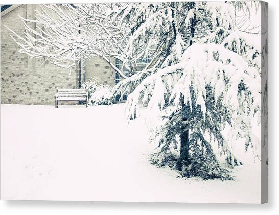 A Gentle Frosting Canvas Print