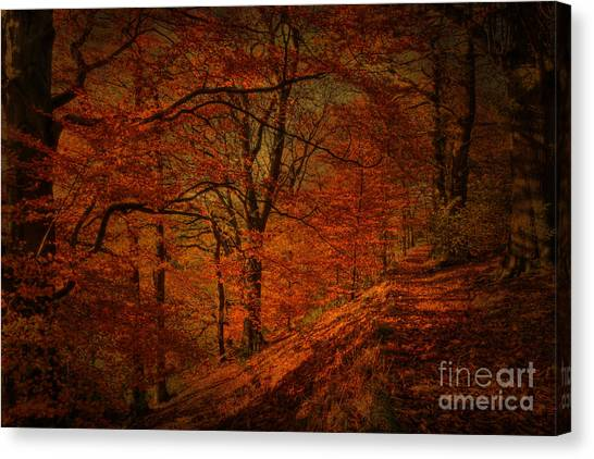 A Golden Day Canvas Print