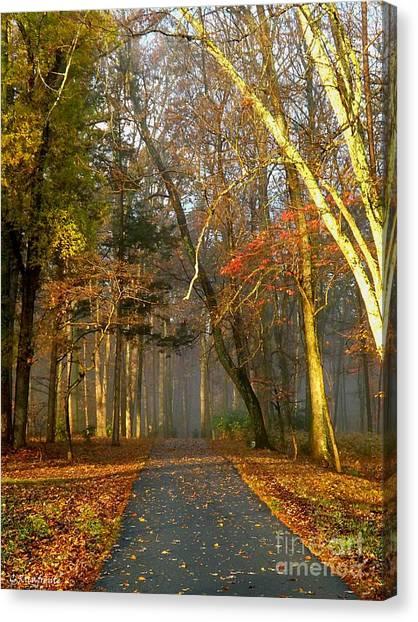A Golden Path Canvas Print