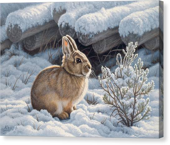 Bunny Canvas Print - A Good Place - Bunny by Paul Krapf