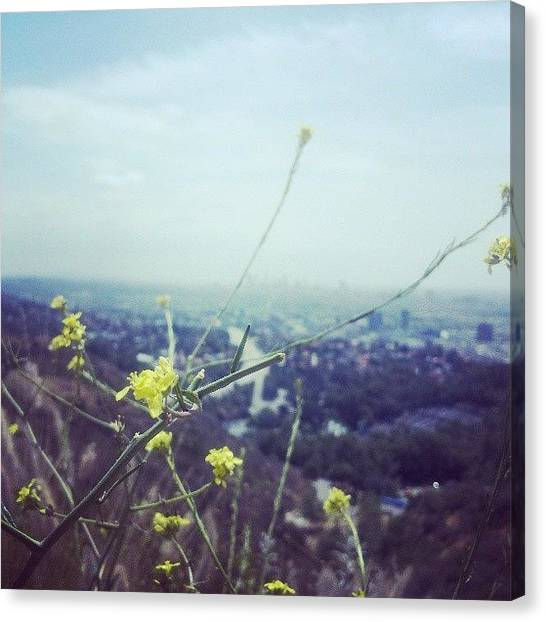 Los Angeles Skyline Canvas Print - Mulholland Drive by Susana Ochoa-Sobieszek