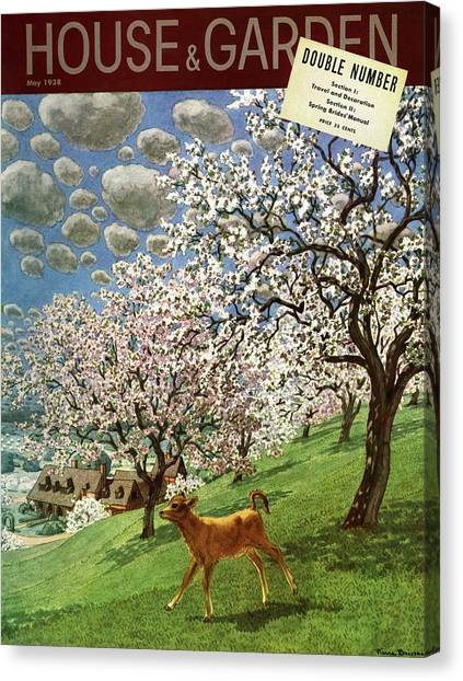 Fruit Trees Canvas Print - A House And Garden Cover Of A Calf by Pierre Brissaud