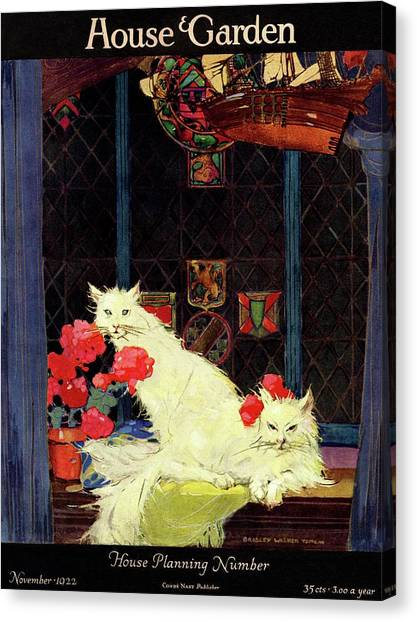 A House And Garden Cover Of White Cats Canvas Print