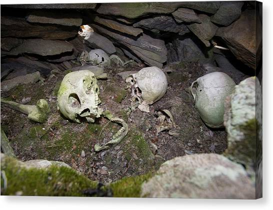Tundras Canvas Print - A Human Inuit Skull In A Stone Cairn by Ashley Cooper