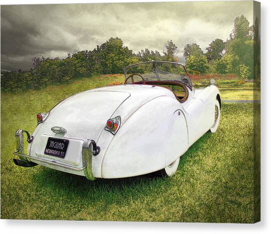 A Jag In The Park Canvas Print
