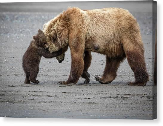 Brown Bears Canvas Print - A Little Bear Hug by Renee Doyle
