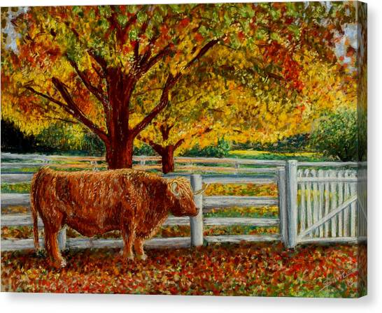 A Shaker Fall Canvas Print