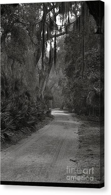 A Lonely Road Canvas Print by Debbie Bailey