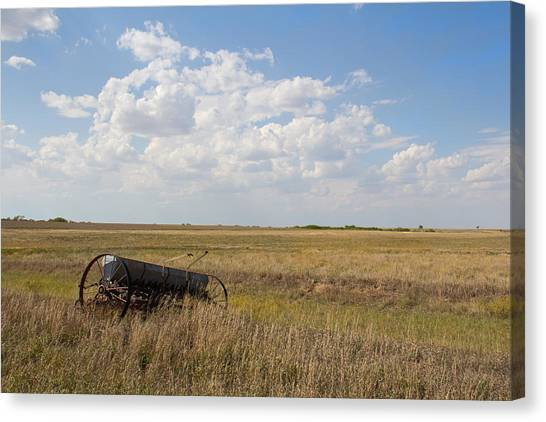 A Long The Field Canvas Print