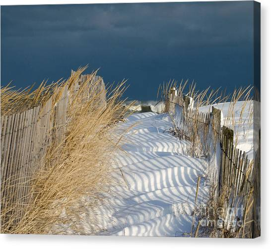 A Long Way From Summer Canvas Print