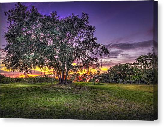 Park Benches Canvas Print - A Look Back by Marvin Spates