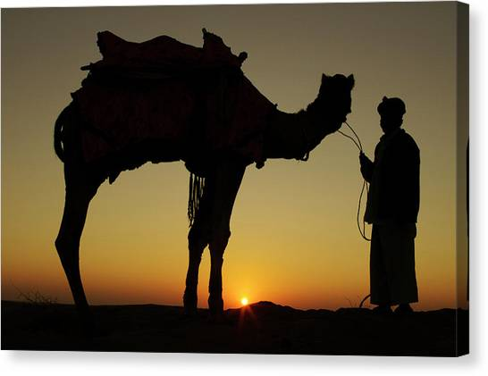 Thar Desert Canvas Print - A Man And His Camel Silhouetted by Piper Mackay