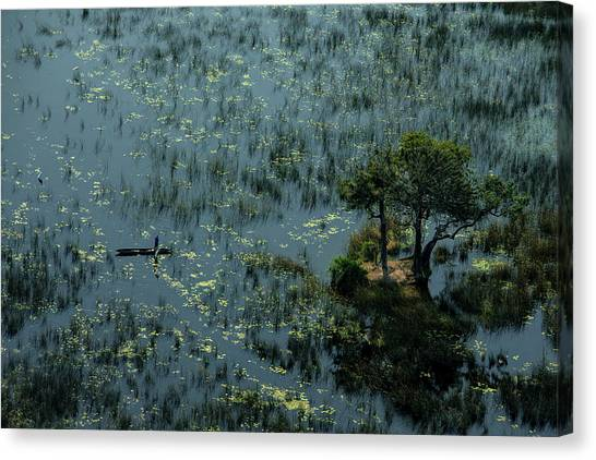 Okavango Swamp Canvas Print - A Man Fishes In The Vast Wetlands by Beverly Joubert