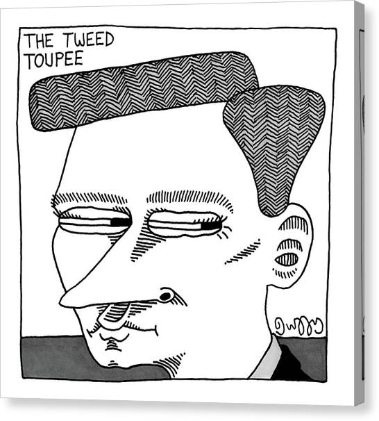 A Man's Head With A Tweed Toupee Canvas Print