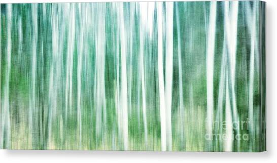 Forest Canvas Print - A Matter Of Blues by Priska Wettstein