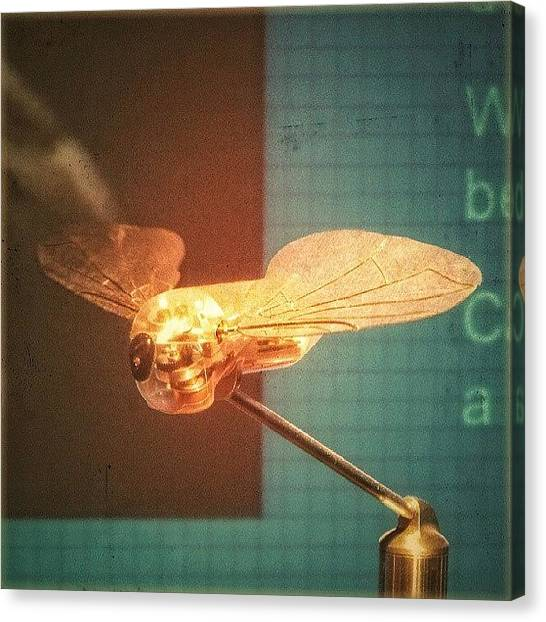 Steampunk Canvas Print - A #mechanical #fly From A #birmingham by Alexandra Cook
