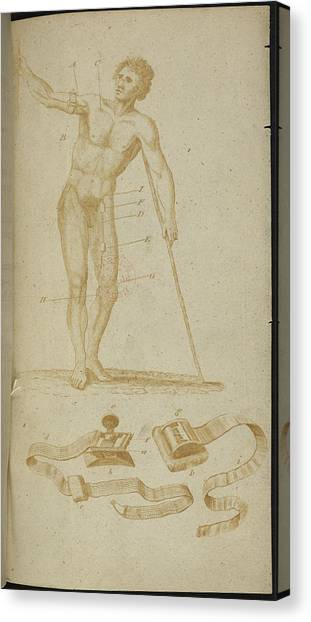 Volunteer Infantry Canvas Print - A Medical Diagram Of A Naked Man by British Library