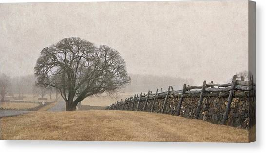 A Misty Morning In Horse Country Canvas Print