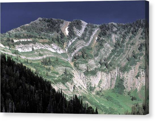 Teton National Forest Canvas Print - A Mountainside With Very Apparent by David Stubbs