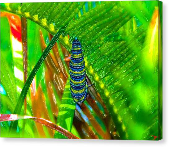 Caterpillers Canvas Print - A New Beginning by David Lee Thompson