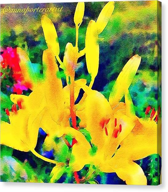 Lilies Canvas Print - A Glorious New Day by Anna Porter