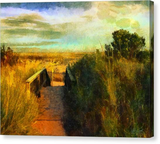 A Path To The Beach Canvas Print