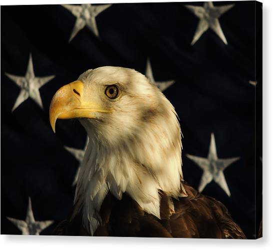 A Patriot Canvas Print
