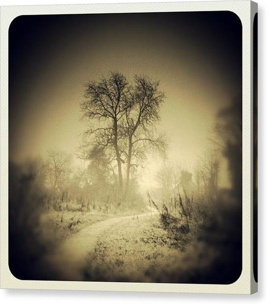 Foggy Forests Canvas Print - A Photo Taken At #bilsthorpe In by Stephen Clarridge