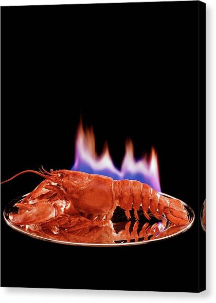 A Plate Of Lobster Flambe Canvas Print