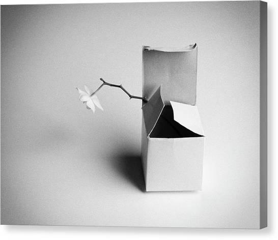 Present Canvas Print - A Present by Kristina Oveckova