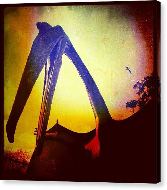 Pterodactyls Canvas Print - A Pterodactyl  by Alexandra Cook