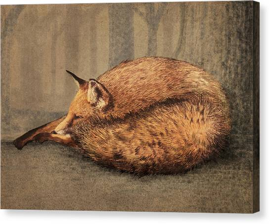 Small Mammals Canvas Print - A Quiet Place by Eric Fan